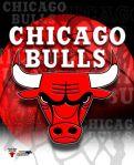 bulls_logo_jpg1